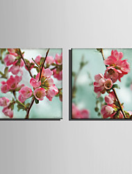 E-HOME® Stretched Canvas Art Beautiful Peach Series Decoration Painting MINI SIZE One Pcs