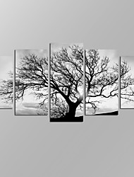 cheap -VISUAL STAR®Black and White Tree Picture Giclee Artwork 5 Panels Modern Home Wall Decoration Framed Canvas Print Ready to Hang