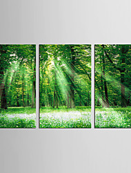cheap -Canvas Set Landscape Floral/Botanical Classic Pastoral,Three Panels Canvas Vertical Print Wall Decor For Home Decoration