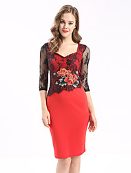 MAXLINDY Women's Embroidery/Lace Going out Casual/Daily Party Vintage Bodycon Lace Dress