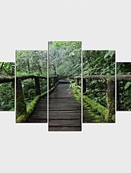 economico -Stampe a tela Floreale/Botanical Pastorale,Cinque Pannelli Tela Qualsiasi forma Stampa artistica Decorazioni da parete For Decorazioni