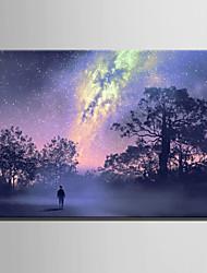 E-HOME Stretched LED Canvas Print Art Wild Sky LED Flashing Optical Fiber Print One Pcs