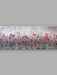 IARTS®Hand Painted Oil Painting Floral Red Poppy Garden with Stretched Frame