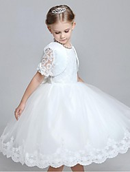 Ball Gown Tea Length Flower Girl Dress - Organza Short Sleeves Jewel Neck by YDN