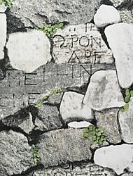 secesní motiv 3D Tapety pro domácnost Moderní Wall Krycí , Jiné Materiál lepidlo požadováno tapeta , pokoj tapeta