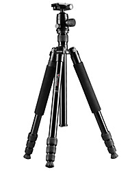Weifeng WF-6620a dslr treppiede professionale