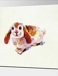 High Quality Hand Painted Colorful Lovely Dog Wall Art Canvas Animal Painting for Baby Room Decoration Painting Picture With Frame