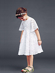 cheap -Girl's Daily Solid Dress,Cotton Summer Short Sleeve Lace White
