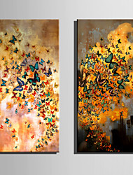 E-HOME Stretched Canvas Art Colorful Butterfly Decoration Painting One Pcs