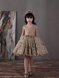 Vestito dalla ragazza di fiore di lunghezza del ginocchio dell'abito di sfera - v neck di chiffon del raso del tulle del merletto con l'arco (i)
