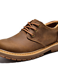 Men's Oxfords Spring Summer Fall Winter Comfort Nappa Leather Outdoor Office & Career Casual Work & Safety Lace-up