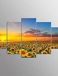 Недорогие -Протянутый холст печати пейзаж современный, пять панелей холст любой формы печати декор стены для домашнего украшения