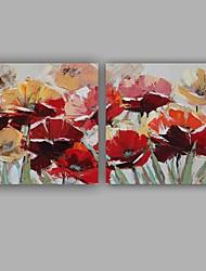 Недорогие -ручная роспись абстрактные / цветочные / ботанические современные / классические две панели холст масляной живописи