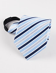 Men's Party/Evening Wedding Formal Lazy man Plaid business Necktie