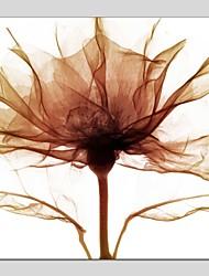 economico -Dipinta a mano Floreale/Botanical Quadrata,Modern Classico Un Pannello Tela Hang-Dipinto ad olio For Decorazioni per la casa