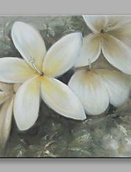 economico -Dipinta a mano Floreale/BotanicalContemporaneo Fiore Un Pannello Tela Hang-Dipinto ad olio For Decorazioni per la casa