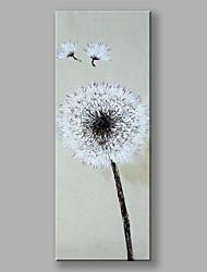 Dipinta a mano Floreale/Botanical Verticale,Contemporaneo Fiore Un Pannello Tela Hang-Dipinto ad olio For Decorazioni per la casa
