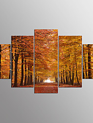 Stretched Canvas PrintFive Panels Horizontal Print Wall Decor For Home Decoration