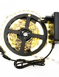 Недорогие -5 м гибкие светодиодные полосы светлые наборы # светодиоды 1 кабель постоянного тока теплый белый белый красный синий водонепроницаемый