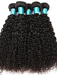 5 Bundles Kinky Curly Hair 500 gram Women Hairs 100% Human Hairs Bundles Brazilian Virgin Kinky Curly Hair Extensions