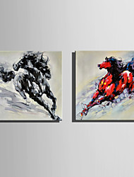 cheap -Mini Size E-HOME Oil painting Modern Looking Back At The Running horse Pure Hand Draw Frameless Decorative Painting Set of 2