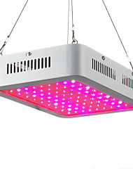 80W LED Grow Lights 100 High Power LED 2000-2300 lm Warm White Red Blue UV (Blacklight) K AC85-265 V