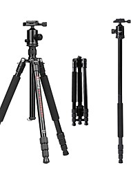 cheap Tripods, Monopods & Accessories-Aluminum-magnesium alloy 50 4 sections Nikon Canon Tripod