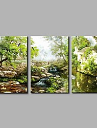 Hand-Painted Vintage Horizontal Panoramic,Artistic Nature Inspired Rustic Birthday Modern/Contemporary Office/Business Cool Christmas New