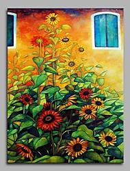 abordables -girasol de ventana 100% pintado a mano pinturas al óleo contemporáneas ilustraciones modernas arte de la pared para la decoración de la habitación