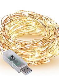 Недорогие -10 м Гирлянды 100 светодиоды SMD 0603 Тёплый белый / Белый / Разные цвета Декоративная Работает от USB 1шт / IP65