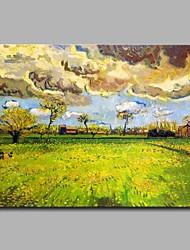 Недорогие -поля в декоративной дождевой стене ручная роспись современных картин маслом современное произведение искусства стены