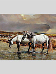 abordables -Pintura al óleo pintada a colgar Pintada a mano - Animales Clásico Lona