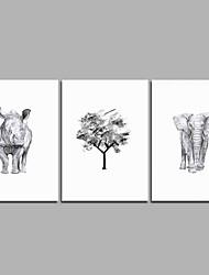 Недорогие -карандаш рисунок 3-х частей современного искусства настенного искусства для украшения комнаты 20x28inchx3