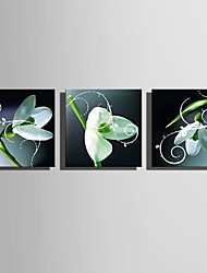 cheap -LED Canvas Art Botanical Three Panels Square Print Wall Decor Home Decoration