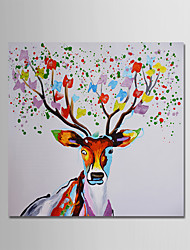cheap -Hand-Painted Animal Square,Modern One Panel Canvas Oil Painting For Home Decoration