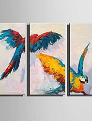 Недорогие -Hang-роспись маслом Ручная роспись - Животные Деревня Modern холст