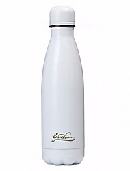 cheap -Stainless Steel Water Bottle Casual/Daily Drinkware 1