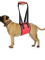 Недорогие -Собака Ремни Безопасность Однотонный Полиэстер Черный Красный Синий
