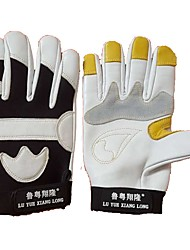 cheap -Full-finger Gloves Unisex Golf Glove Lambskin Leather Cotton Fabric