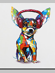 cheap -Oil Painting Hand Painted - Animals Animals Simple Modern Canvas