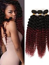 cheap -Brazilian Hair Kinky Curly Virgin Human Hair Ombre Hair Weaves Human Hair Weaves Black / Dark Wine