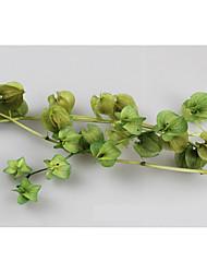 cheap -Wedding / Party Dried Flower Wedding Decorations Floral/Botanicals / Garden Theme / Floral Theme / Romance / Fantacy / Birthday / Friends