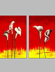 cheap -Hand-Painted Floral/Botanical Horizontal Panoramic, Modern Canvas Oil Painting Home Decoration Two Panels