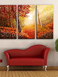 abordables -Impression sur Toile Moderne, Trois Panneaux Toile Format Vertical Imprimé Décoration murale Décoration d'intérieur