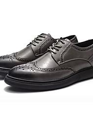 Недорогие -Муж. обувь Искусственное волокно Весна Осень Удобная обувь Туфли на шнуровке для Повседневные Черный Темно-серый