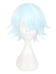 Недорогие -Косплей Косплей Все 12 дюймовый Термостойкое волокно Синий Аниме Косплэй парики