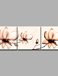 cheap -Print Rolled Canvas Prints / Stretched Canvas Prints - Modern / Floral / Botanical Modern