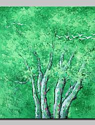preiswerte -Hang-Ölgemälde Handgemalte - Landschaft / Blumenmuster / Botanisch Modern Segeltuch