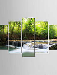 baratos -Estampado Laminado Impressão De Canvas - Estações / Fotografia Modern
