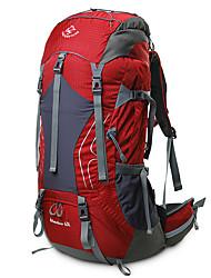 Недорогие -60 L Заплечный рюкзак Дышащий Дожденепроницаемый Высокая емкость На открытом воздухе Пешеходный туризм Походы Путешествия Красный Зеленый Синий / Да
